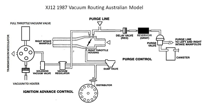 jaguar vacuum diagram schematics wiring diagrams u2022 rh seniorlivinguniversity co Jaguar Cars 1963 Jaguar XKE