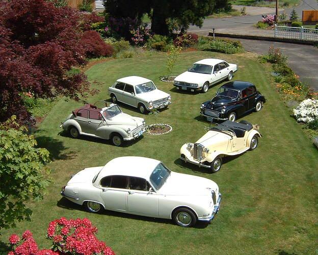 6 cars #4