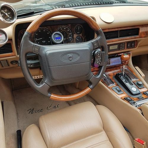 Celebration steering wheel