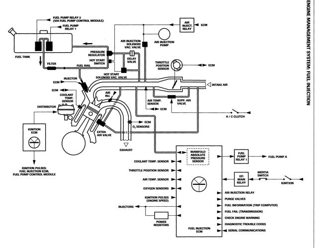 Marelli Engine     What Goes Where  - Xj-s