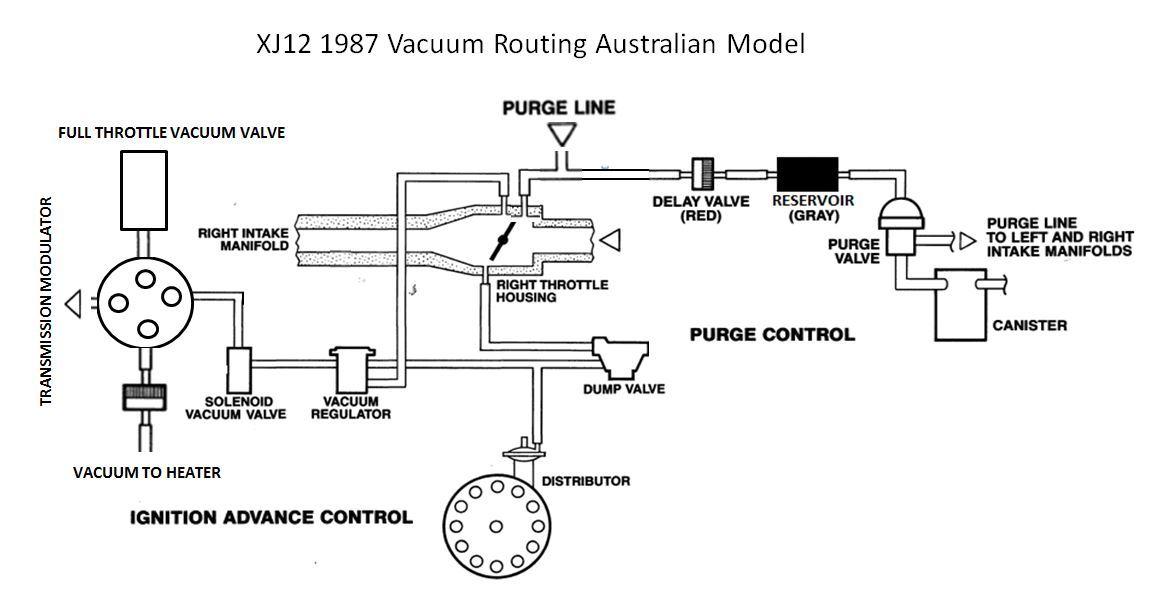 jaguar xj12 1987 canadian vacuum lines xj jag lovers. Black Bedroom Furniture Sets. Home Design Ideas