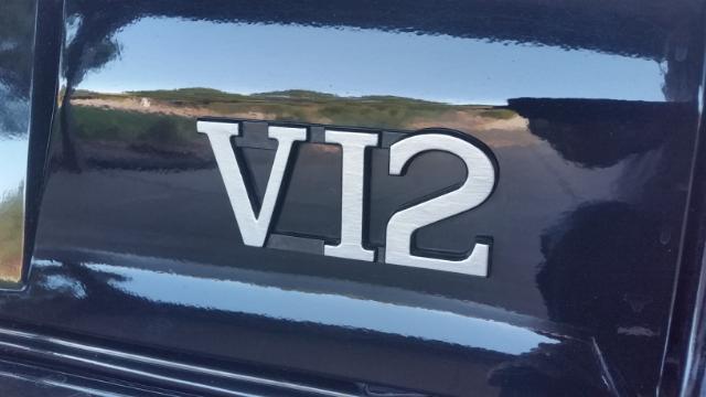 v12-emblem
